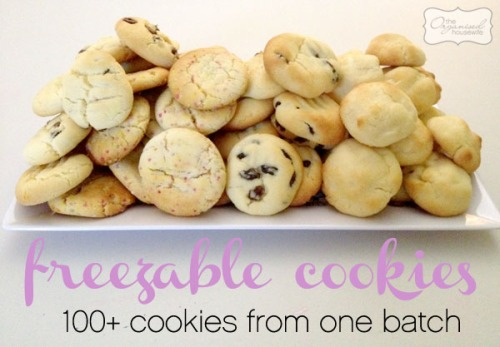 100+-freezeable-cookies1