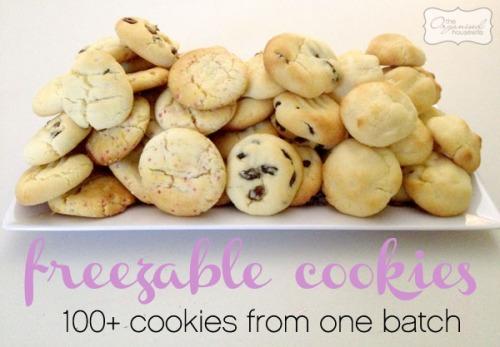100+-freezeable-cookies1