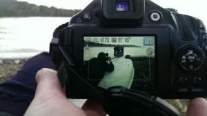 Photo of photos on cameras